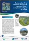 Restauration de la continuité écologique des cours d'eau : exemples de pratiques en Europe